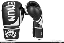 Today on MMAHQ Venum Challenger Boxing Gloves - $40